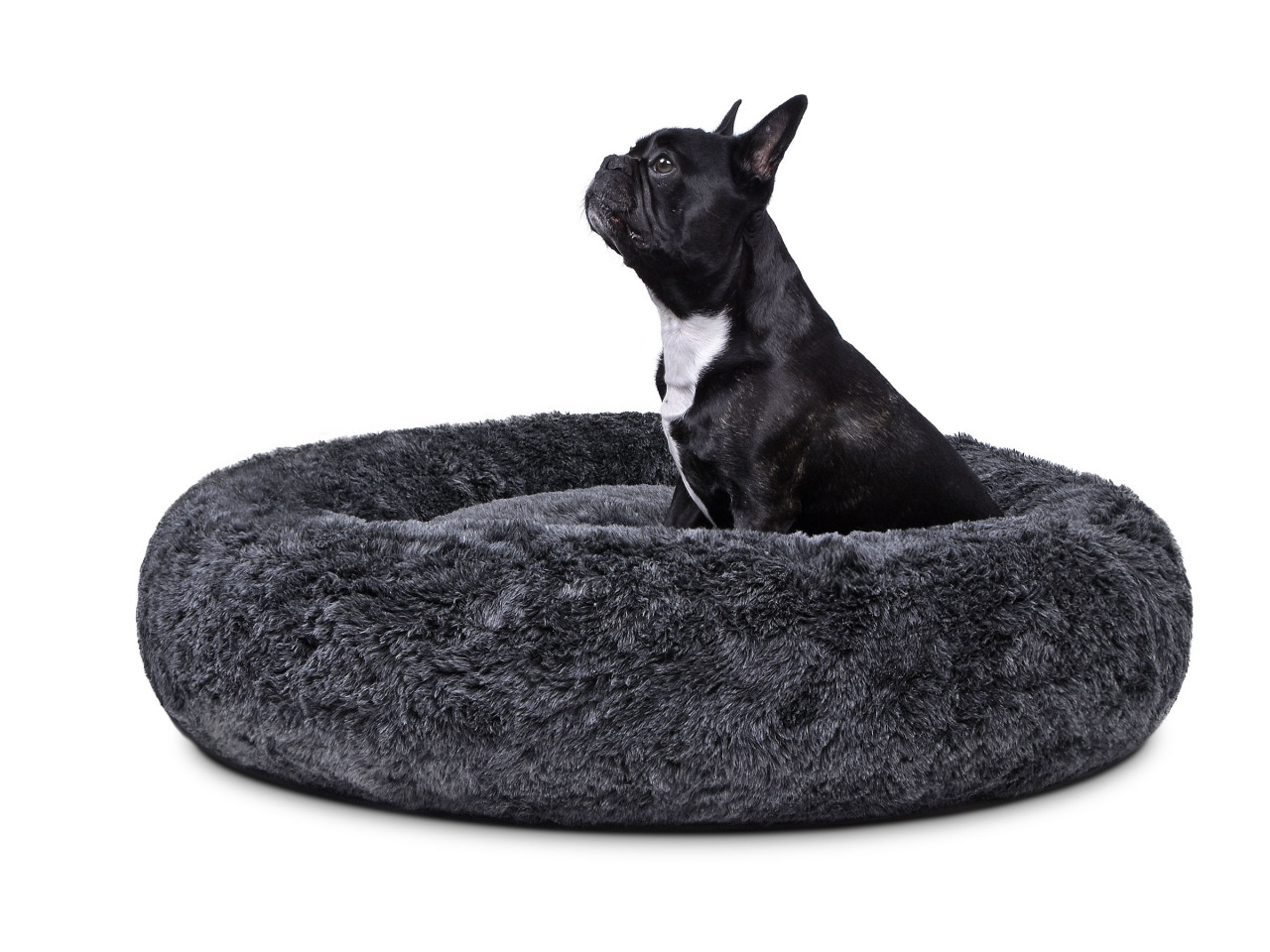 hundebett-COSY BASIC-anthrazit-hund