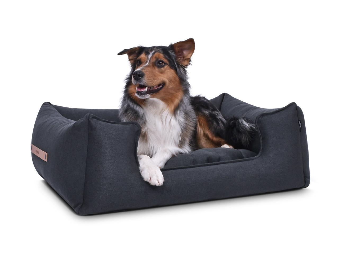 hundebett-NORDIC-basic-anthrazit-hund