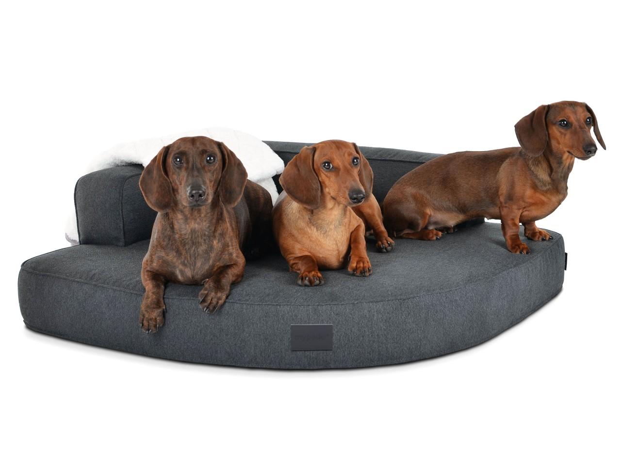 Hundebett Ortho Care Luxury Anthrazit