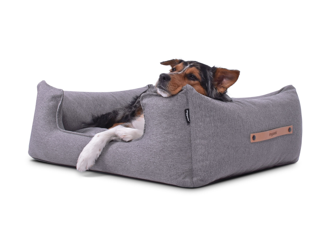hundebett-NORDIC-basic-grey-hund2
