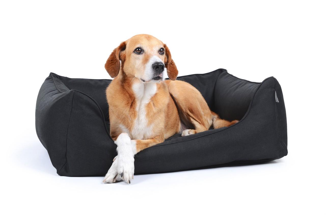 Hundebett Ortho Care Cosy Black
