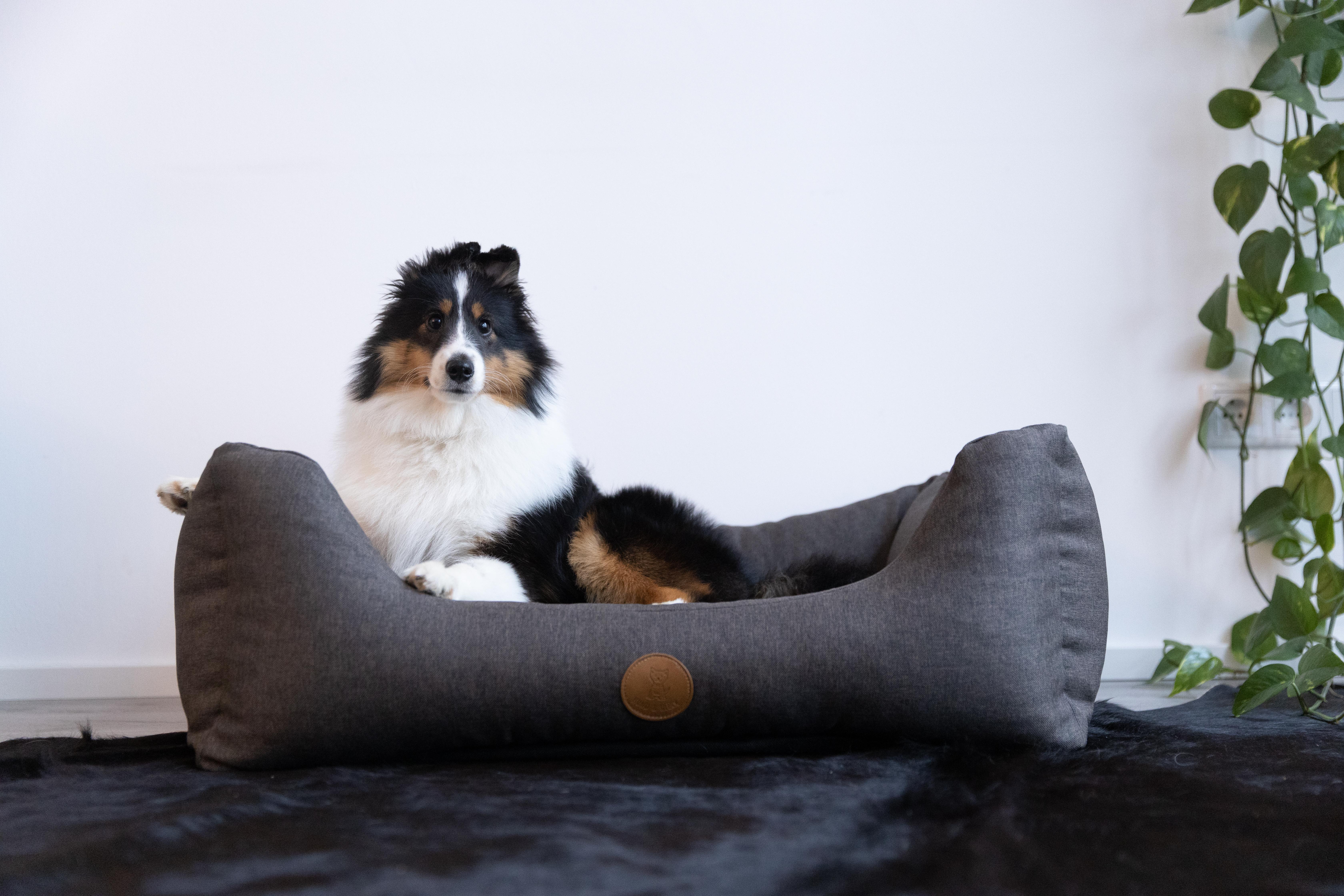 Hund&Glück Hundebett Heaven Ortho Anthrazit XL