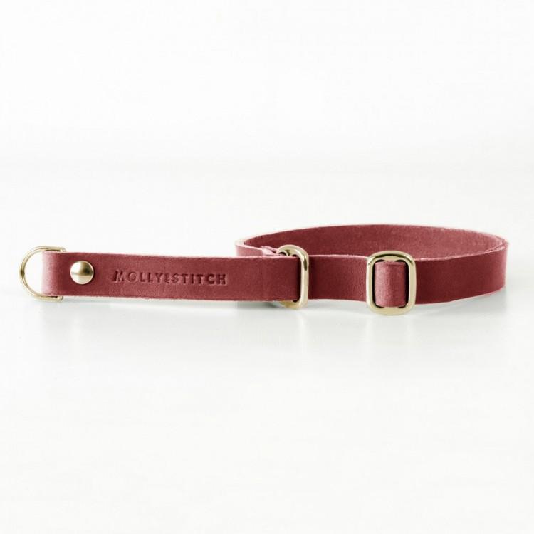 Hundehalsband Retriever gold Chili red